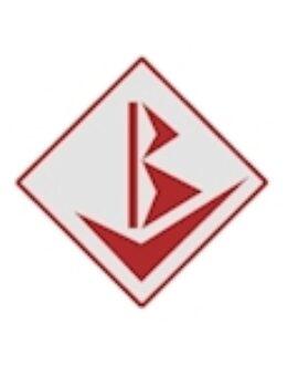 BV Fiduciaria SA